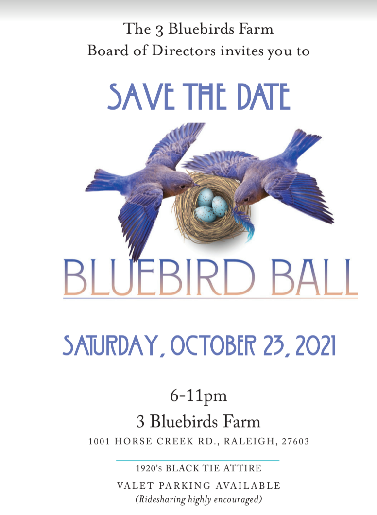 Azura Skin Care Center Bluebird Ball Sponsor October 23 2021
